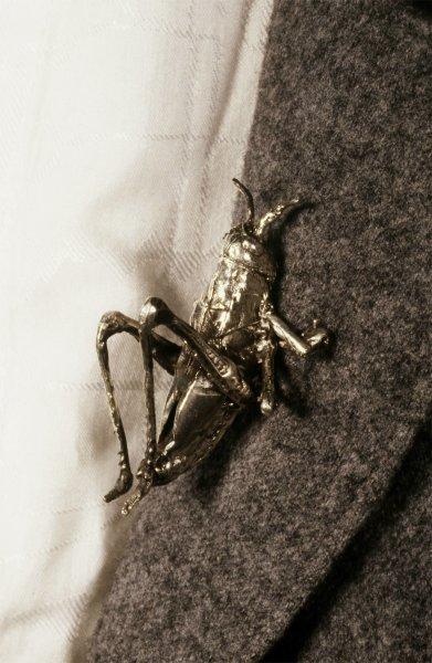 grasshopperbrooch